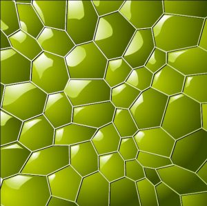 HD-108 Tea Green Turtle Shape 3D Stretch Ceiling Film for Ceiling Decoration